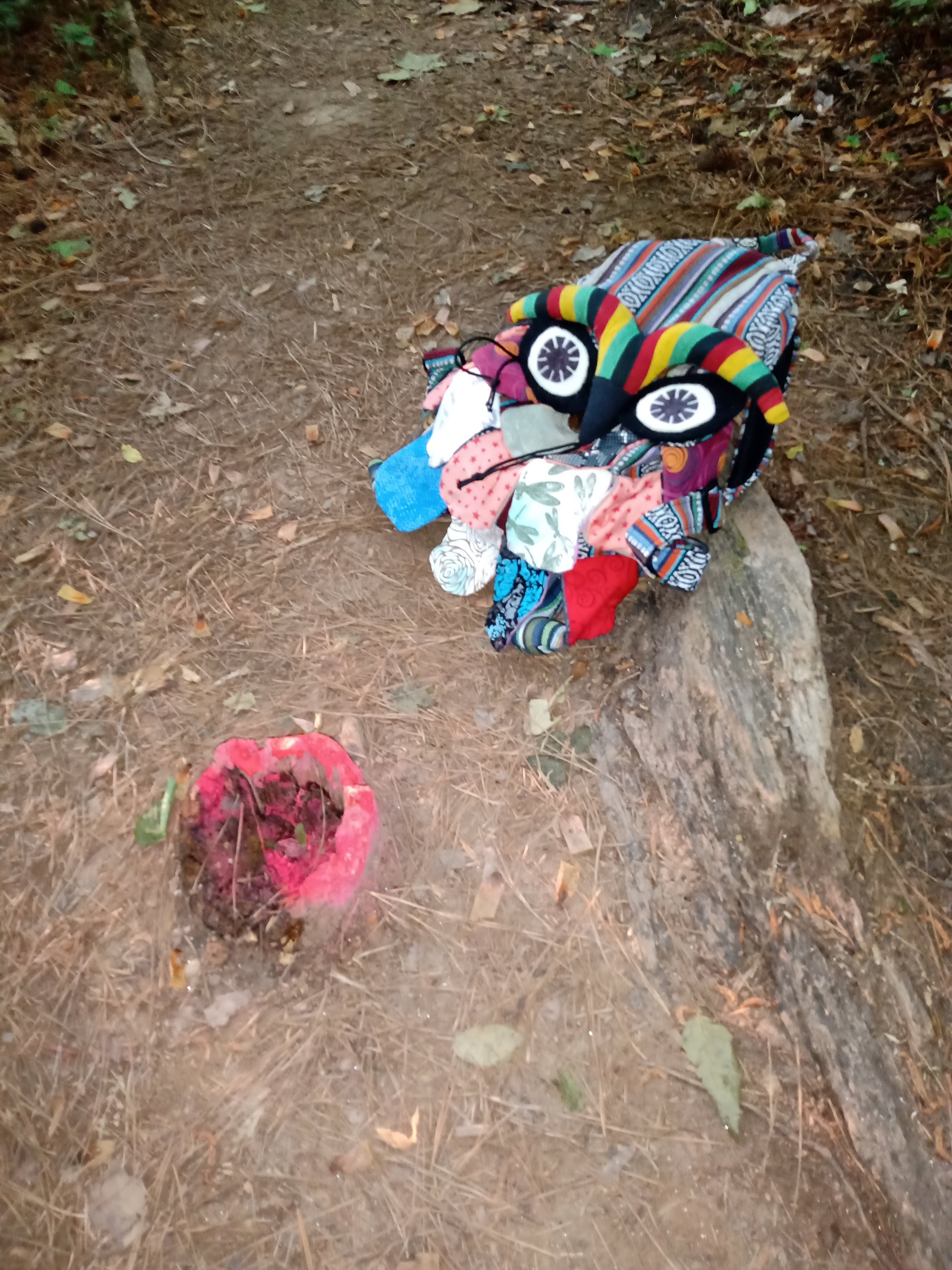 Colorful backpack that looks like an owl on the ground near a stump that's painted red as a warning because it could be a tripping hazard